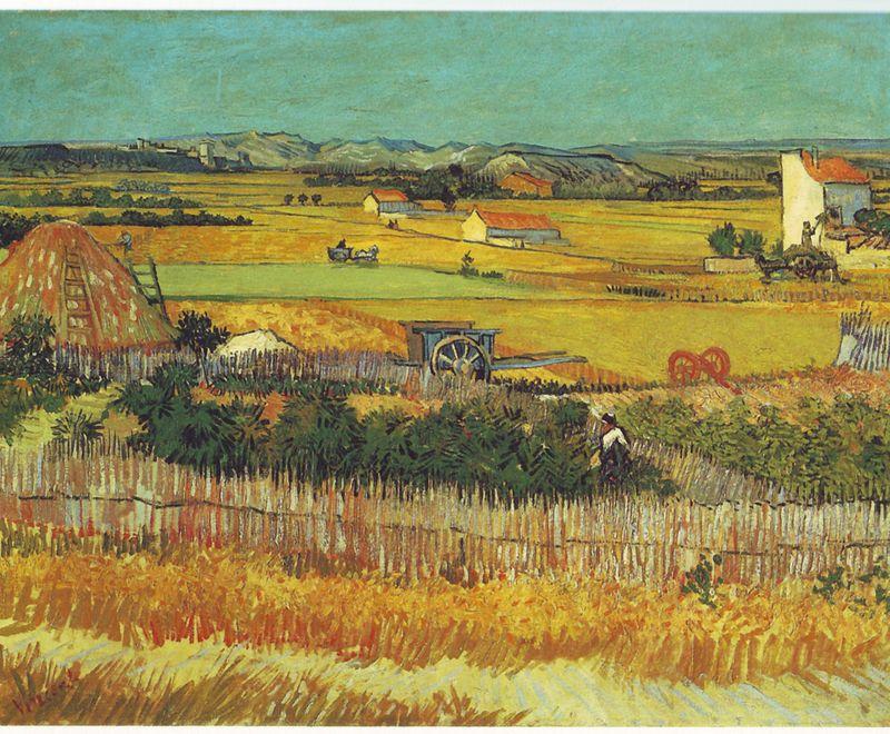 800px-Vincent_Van_Gogh_0019
