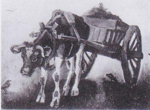 貨車と黒い雄牛