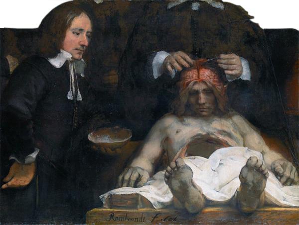 ヨアン・デイマン博士の解剖学講義