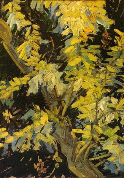 Van_Gogh_Blossoming-Acacia-Branches-1890