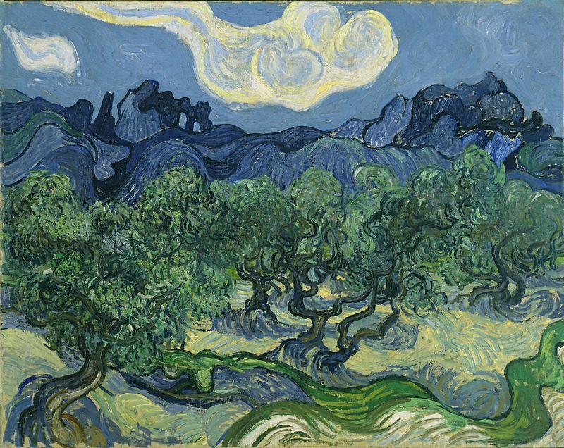 800px-van_gogh_the_olive_trees
