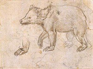 歩くクマの素描