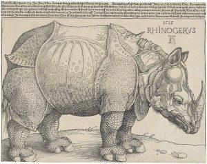 du%cc%88rers_rhinoceros_1515