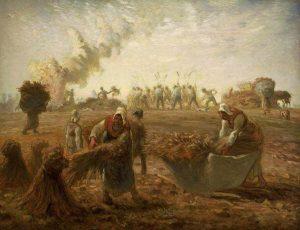 jean-francois-millet-buckwheat-harvest-summer