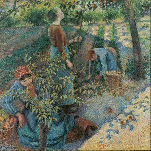 597px-camille_pissarro_-_apple_picking_-_google_art_project