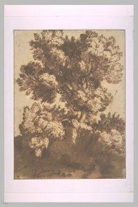louvre-arbres_1