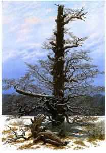 雪の中の樫(1829年)