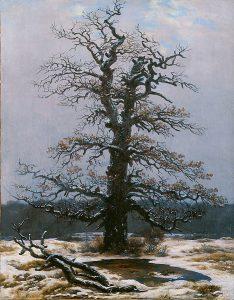 雪の中の樫(1828年)