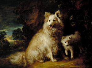 メスのポメラニアンと子犬
