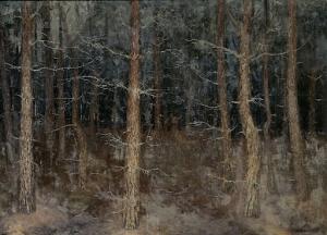 神秘的な道:森の顔