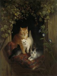 子猫たちと猫