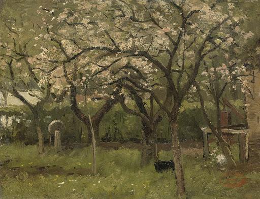 果樹園の花が満開の木