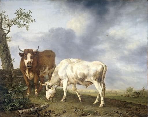 牧草地の牛たち