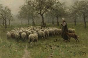羊の群れと女性羊飼い