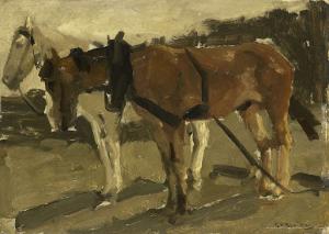 スヘフェニンゲンの白と茶色の馬