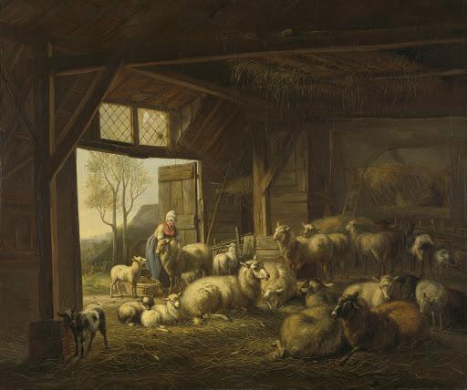 小屋の中の羊とヤギ