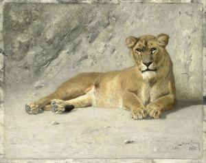 休憩する雌ライオン