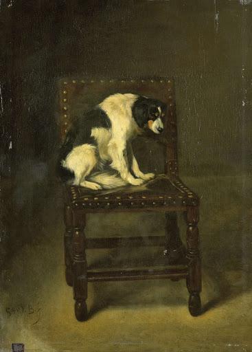 椅子の上の犬