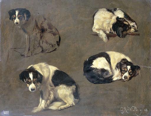 4つの犬の習作