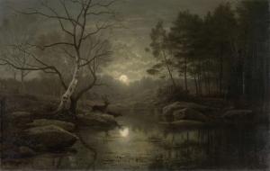 月明りの中の森の風景