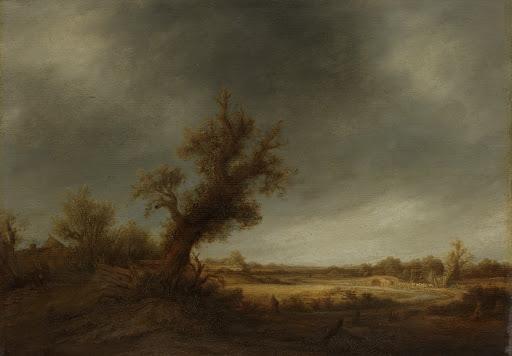 古い樫の木の風景