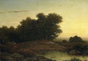 日没の森の中の眺め