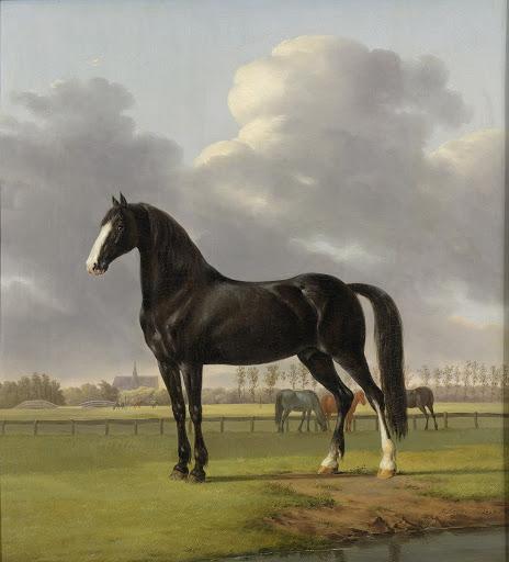 草原に佇むアドリアン・ファン・デル・ファープの早馬「De Vlugge」(疾きもの)