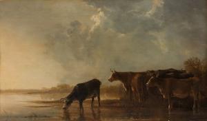 牛がいる川の風景