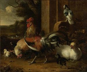 家禽のための庭
