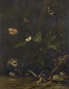 動物と植物