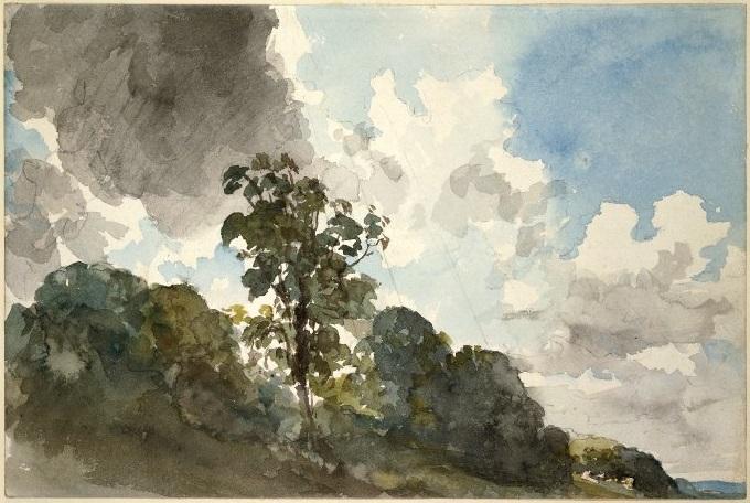 雲と木の習作