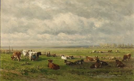 牛のいる牧草地の風景