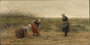 荒れ果てたジャガイモ畑を耕し直している、シェヴェニンゲンの女たち