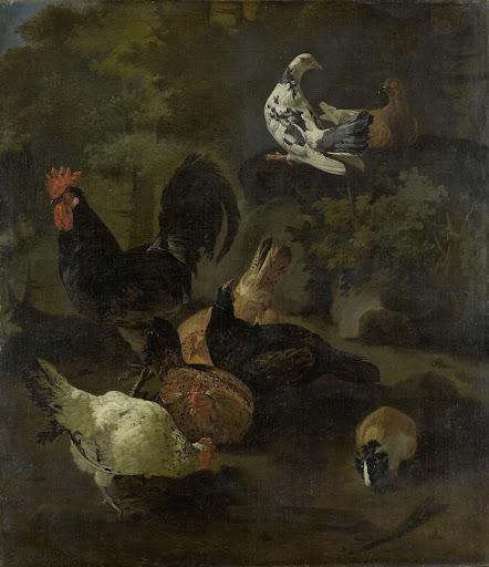 雄鶏、雌鶏、鳩、マーモット