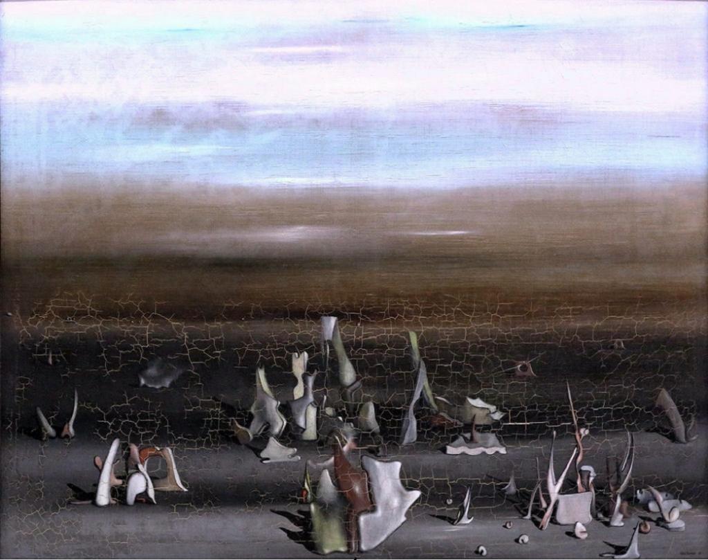 ナメクジウオの巣