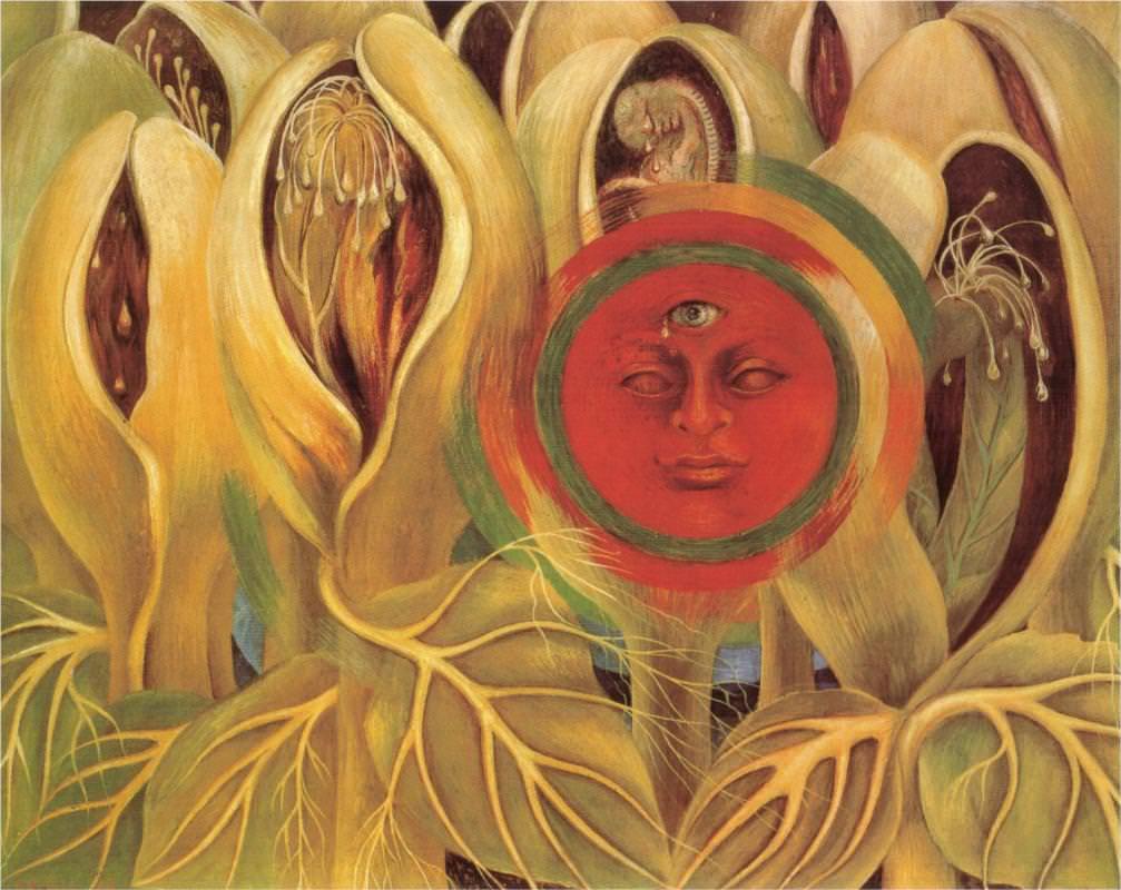 太陽と生命
